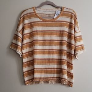 AEO brown striped ribbed crop top